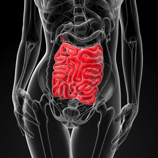 10-things-that-cause-leaky-gut-copy